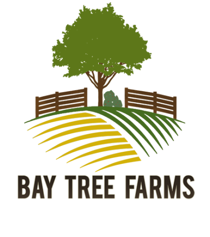 Bay_TRee_Farms_Nigger.png?width=418&heig