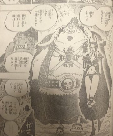 One Piece Spoilers 979 Image0