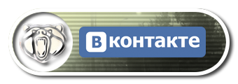 DOLG_Twitch_Panel_VK_Art.png