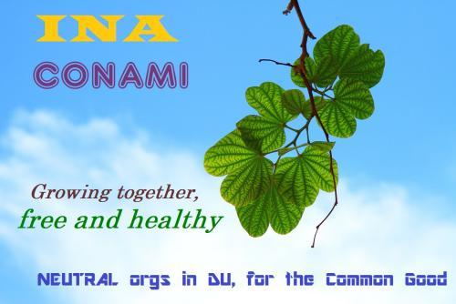 INA-CONAMI-logo3.jpg?width=500&height=33