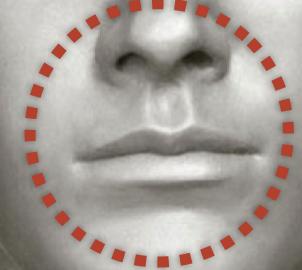 Anastasia Lips and Nose
