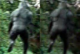 bigfoot ass