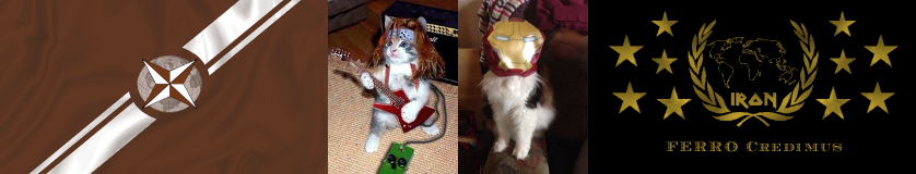 GATO_IRON_BANNER.png