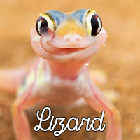 https://media.discordapp.net/attachments/481770566857129987/534175443134316571/gecko1.png