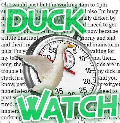 DuckWatch.png
