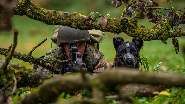 1553703357850spuerhunde-bundeswehr-fallschirmjaeger-kameraden-swrheimat-100__v-16x92dM_-ad6791ade5eb.jpg