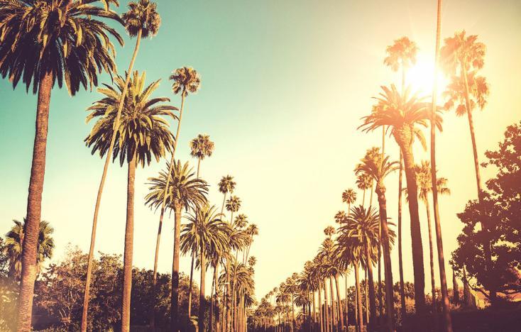 Ulice v LA La-1