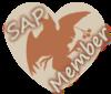 SAP_member_talonok.png