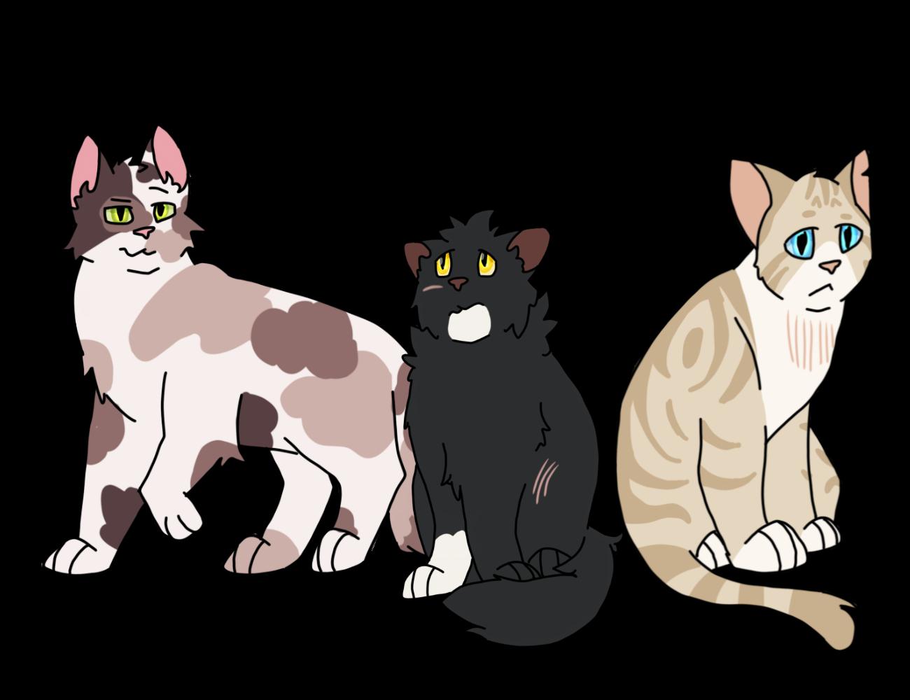 rhindon's cats Cb27664b-16a8-4e45-92cb-402ff673ae25