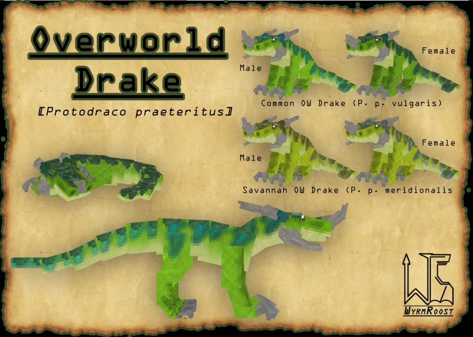 Overworld Drake