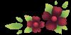 flowers_b.png
