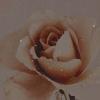 Voir un profil - Esméralda Morales 9MX2addB_o