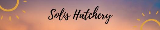 Sun_Spot_Hatchery_1.png