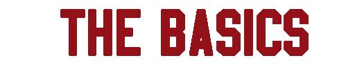 bannerbasics.png