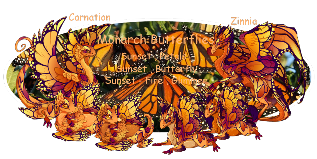 Carnation_and_Zinnia_Banner.png