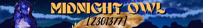 Midnight Owl Forum Banner