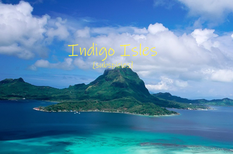 indigio_isles_subspicies.png