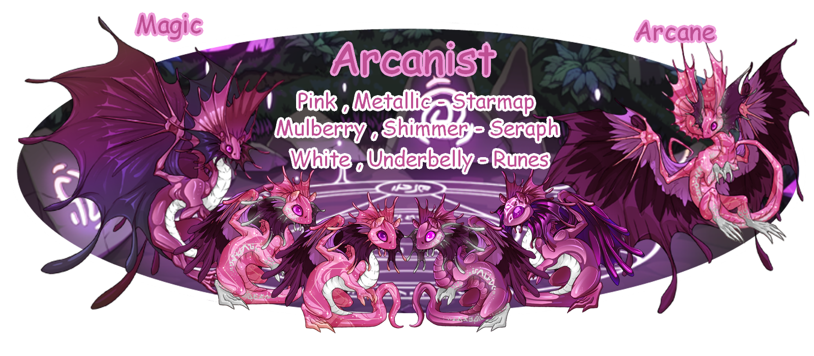 Magic_and_Arcane_Banner.png
