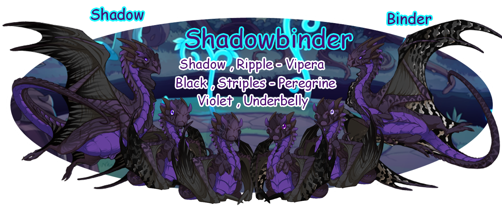 Shadow_and_Binder_Banner.png